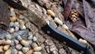 нож Real Steel Gardarik цена
