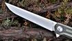 nozh stedemon knives c06 prodazha