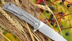 купить Нож CH 3001 gray