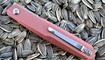 Нож Real Steel G5 Metamorph Gold Rose 7833 в Киеве