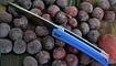 купить нож CH Outdoor CH3002 G10