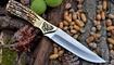охотничий нож Секач купить