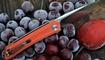 нож CH 3002 купить в Одессе