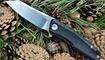 nozh stedemon knives zkc c02 luchshaya  tsena