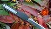 купить Выкидной нож Microtech Ultratech Andy