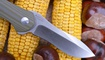 Нож Kizer Bad Dog V3463A2 недорого