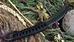 black dragon forge karambit replica foto