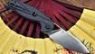 nozh anthropos c903 we knife