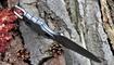 нож скрытого ношения Gerber Epic фото