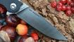 Нож Real Steel Megalodon 7420 отзывы
