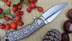 купить Нож Kizer Soveign Tang Ki4431