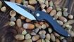 нож Brous Blades Isham Raven Flipper купить