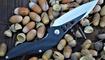 нож Brous Blades Isham Raven Flipper цена