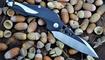 нож Brous Blades Isham Raven Flipper фото