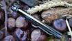 нож Spyderco Native 5 купить в Украине