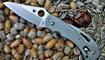 купить нож Spyderco Tusk Mariner Marlinspike C06