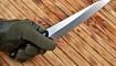kukhonnyy nozh realsteel ohk-utility knife zakazat