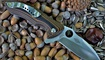 нож Spyderco Rubicon C187 купить