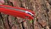 sheynyy nozh metamorph fixed red ukraina