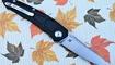 купить нож Maxace Ptilopsis