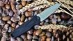 купить шейный нож