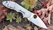 Нож Spyderco Domino C172 купить