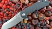 Нож Kizer Sovereign V4423A1