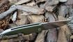 Нож Bestech Knives Lion BG01B в Украине
