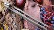 Нож Bestech Knives Scimitar BG05B Николаев