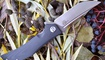 Нож Bestech Knives Scimitar