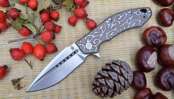 Нож Kizer Soveign Tang Ki4431