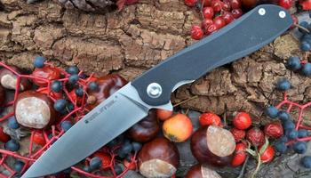 Нож Real Steel E801 Megalodon 7420