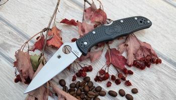 Нож Spyderco Endura C10