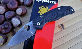 Нож Spyderco Native 5 C41