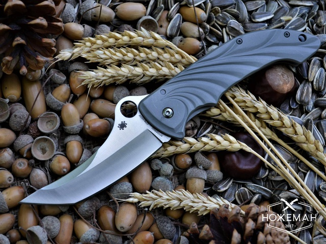Нож Spyderco Tighe Stick C198