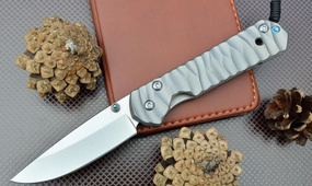 Нож Chris Reeve Small Sebenza 21 Satin Wave Handle